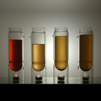 molo tea lantern2 jun 041 Alkoholowy zawrót głowy