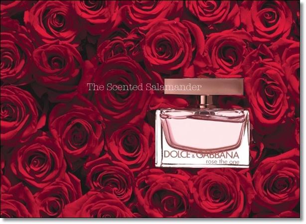 Scarlett Johansson - muza Dolce i Gabbana