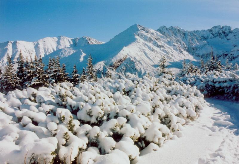 Zimowy wypoczynek w Zakopanem