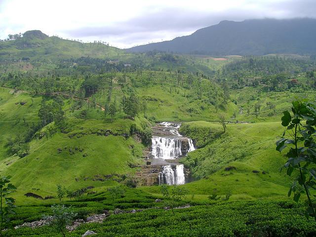 Sylwester 2010 - Sri Lanka