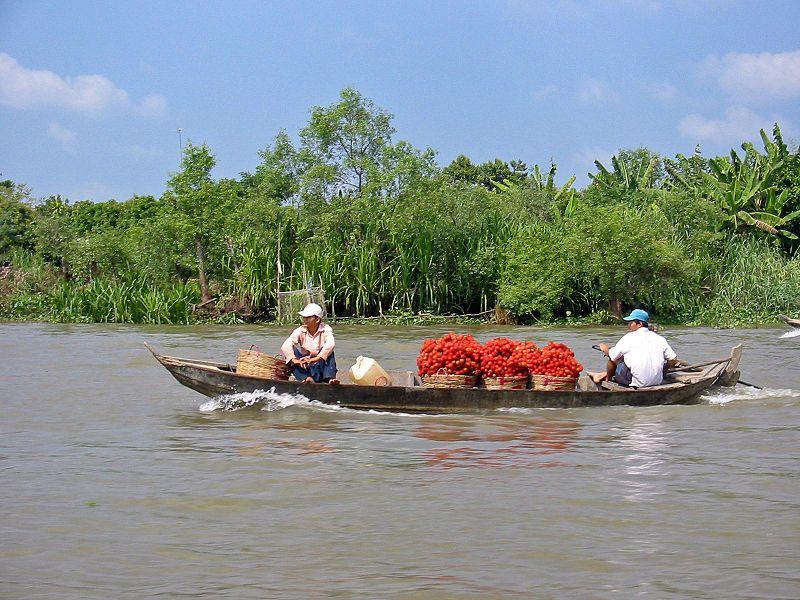 800px mekong delta vietnam1 Cudze poznajmy Wietnam dla odważnych