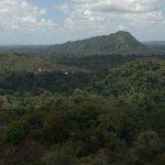 Cudze poznajmy - Surinam dla ciekawych